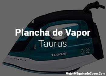 Plancha de Vapor Taurus